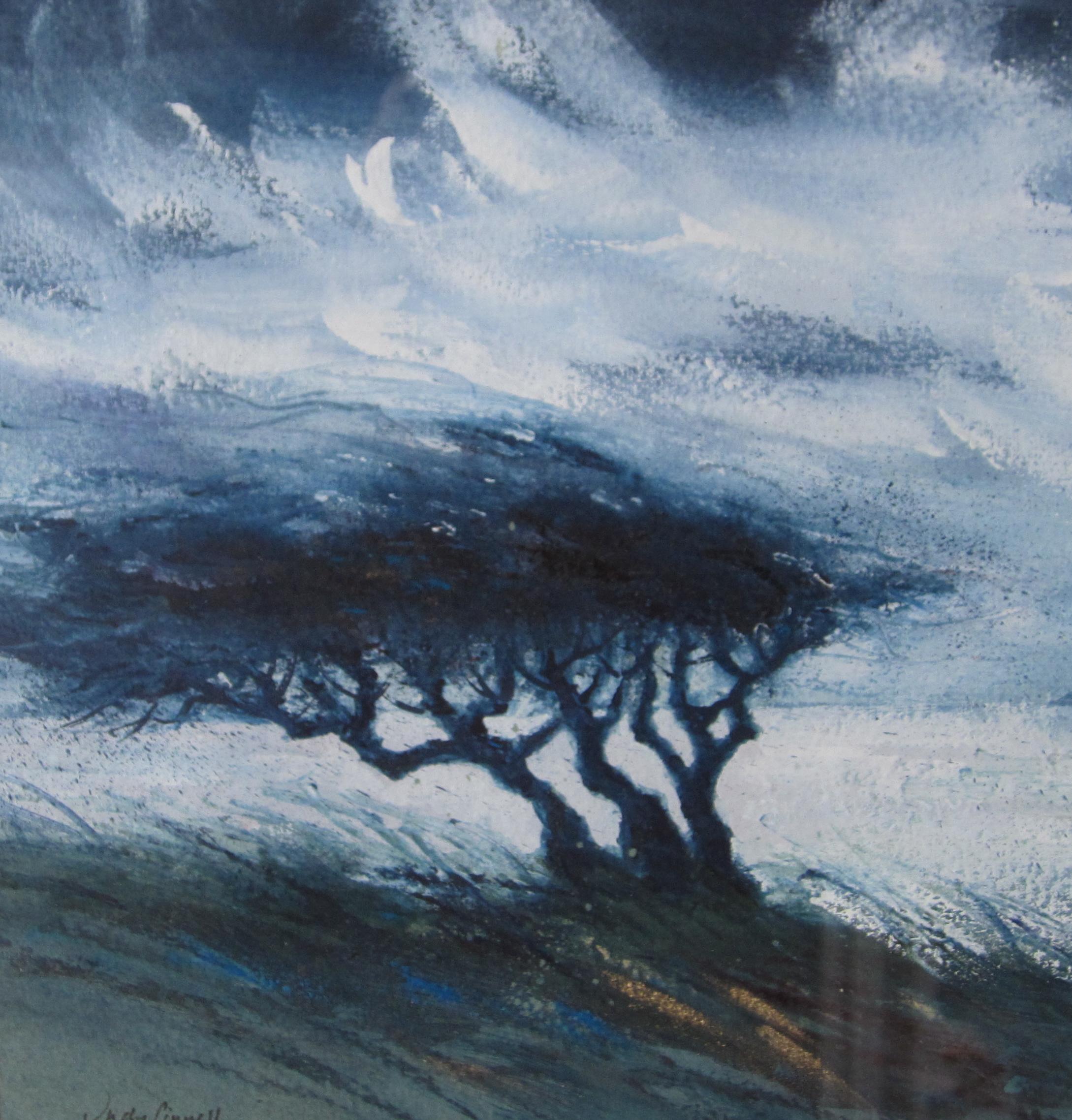 Wild Hawthorns IV